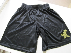 Physical Education Shorts (required)